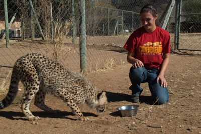 Olivia Spagnuolo kneeling next to a cheetah at the Cheetah Conservation Fund