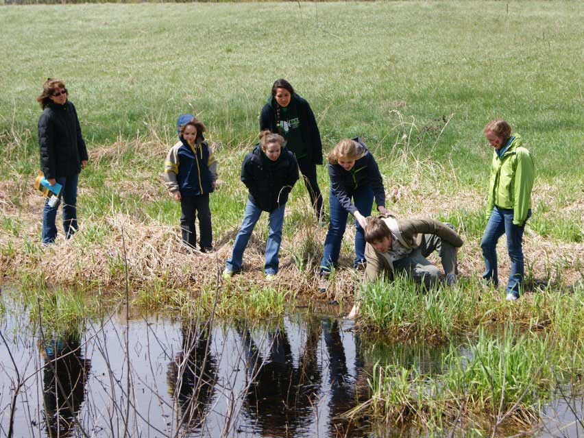 Members of the Herpetology Club looking for herps at the edge of a body of water
