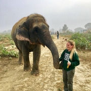Outstanding Student to Outstanding Professional: Alumna Rachel Emory's Role in the Care of Elephants in Captivity