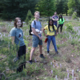 Ally Brown: My Summer as an Undergraduate Research Apprentice at the Kellogg Biological Station